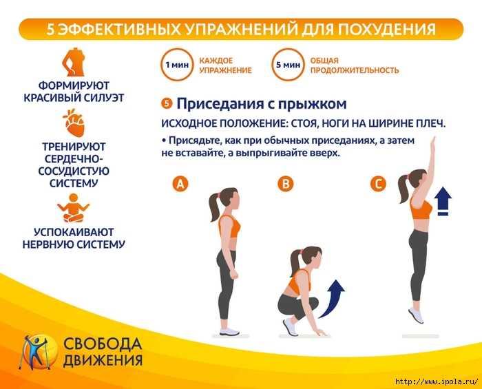 Тренировка в тренажёрном зале для похудения, сброса веса и коррекции фигуры. правила проведения тренировок. план занятий 3 раза в неделю.