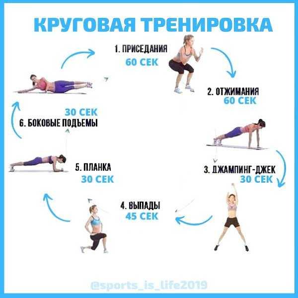 Что такое круговая тренировка + готовая программа