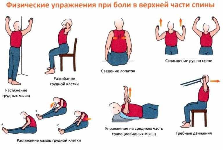 Лфк при остеохондрозе: комплекс базовых упражнений