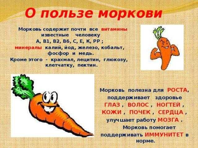 Польза моркови для женщин: чем целебна для организма, как применяют мякоть и сок растения в кулинарии, косметологии, медицине?