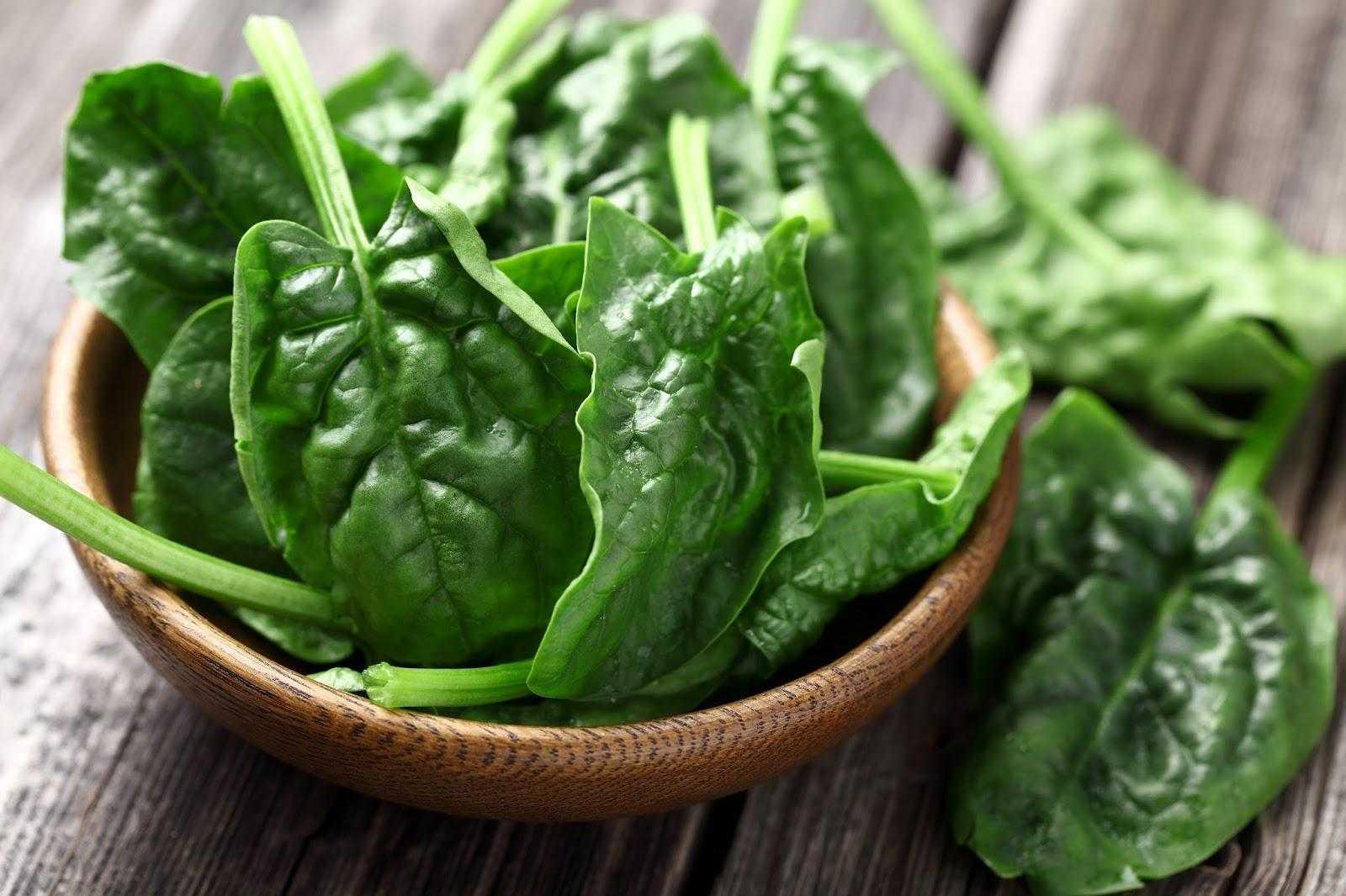 Шпинат: польза и вред, как употреблять в пищу, рецепты с фото