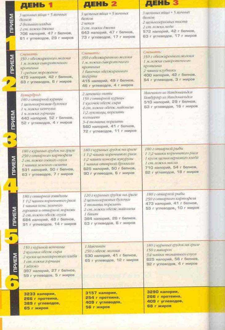 Программа тренировок фулбоди