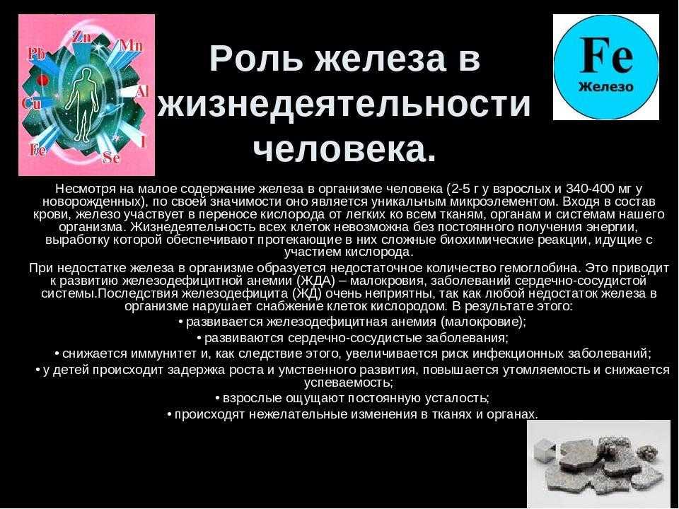 Что мешает усвоению железа и кальция: рекомендации диетолога   курсы и тренинги от лары серебрянской