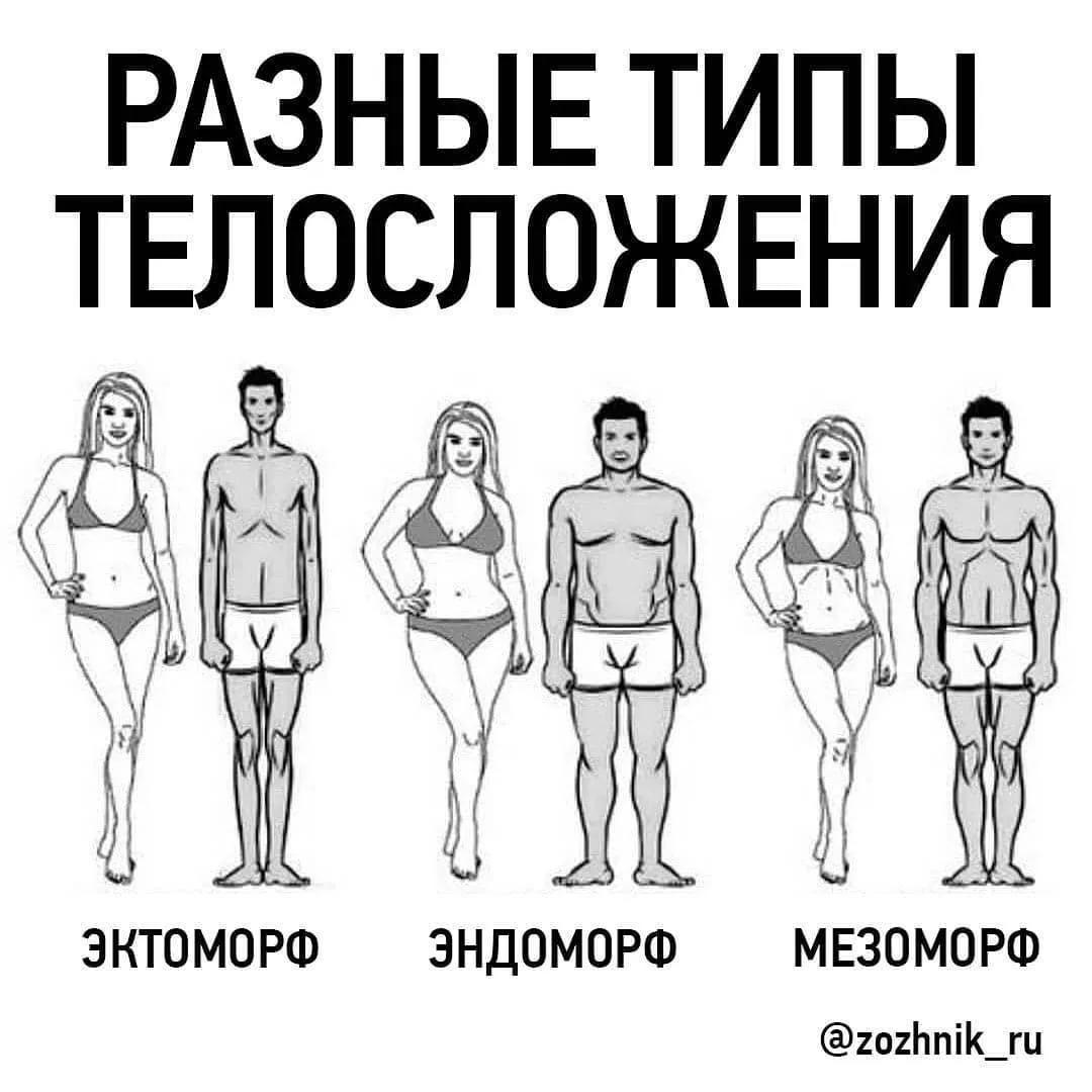 Типы телосложения мужчин и женщин: эндоморф, эктоморф, мезоморф