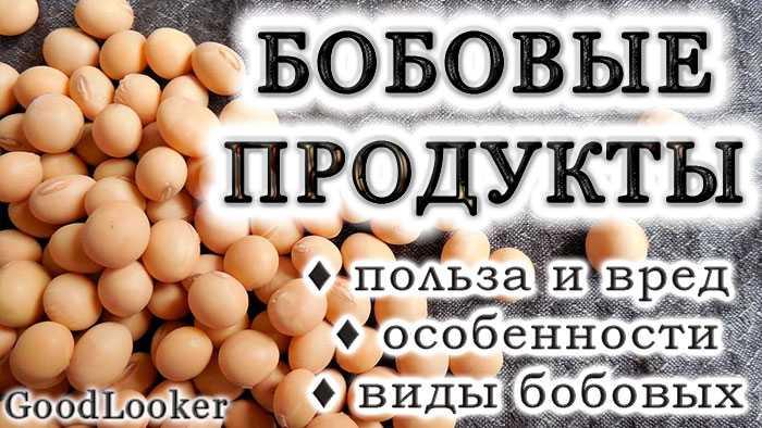 Какие орехи можно есть при похудении и в каком количестве