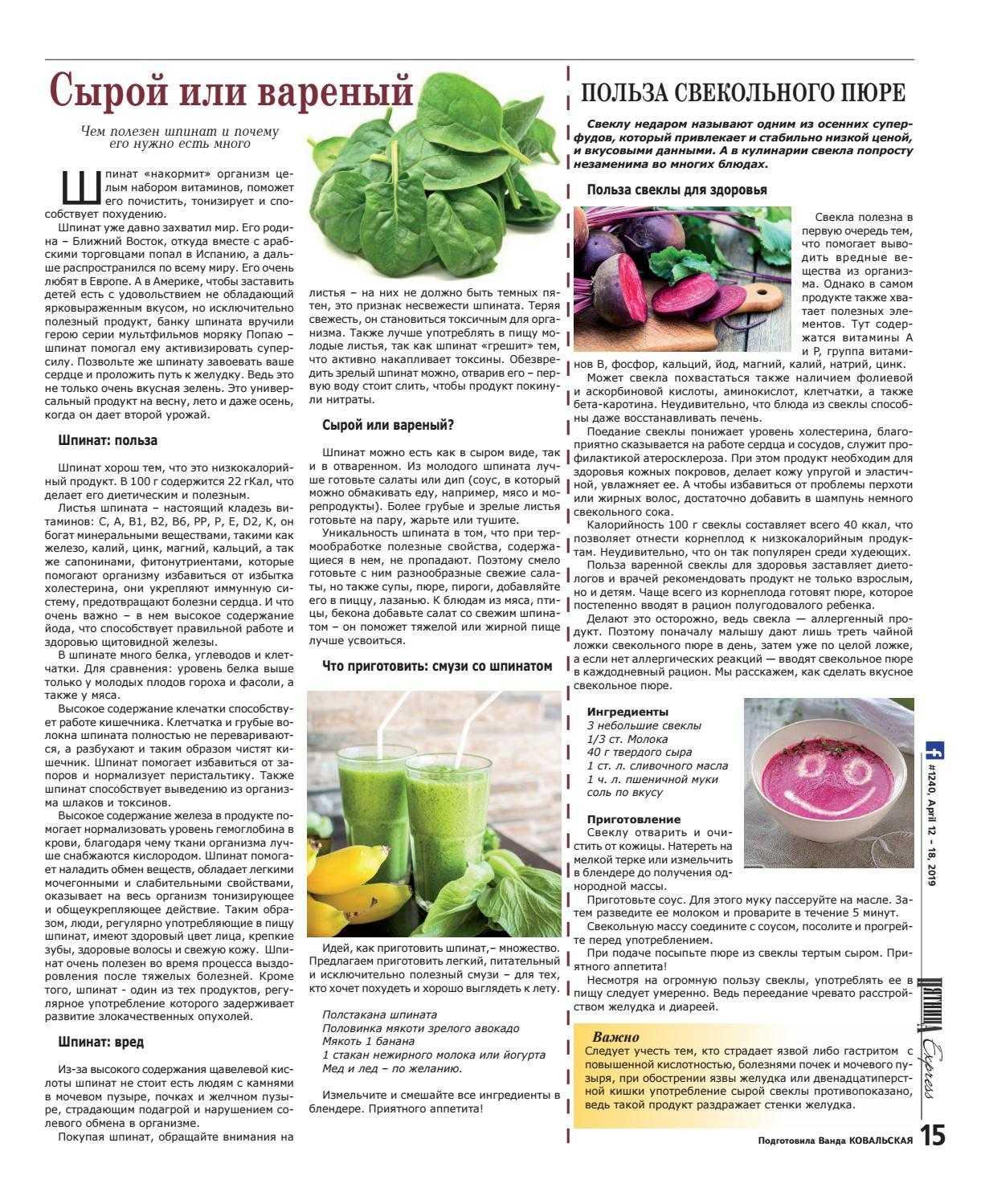 Шпинат – полезные свойства, рецепты и противопоказания «генерала листовой зелени» | здорова и красива