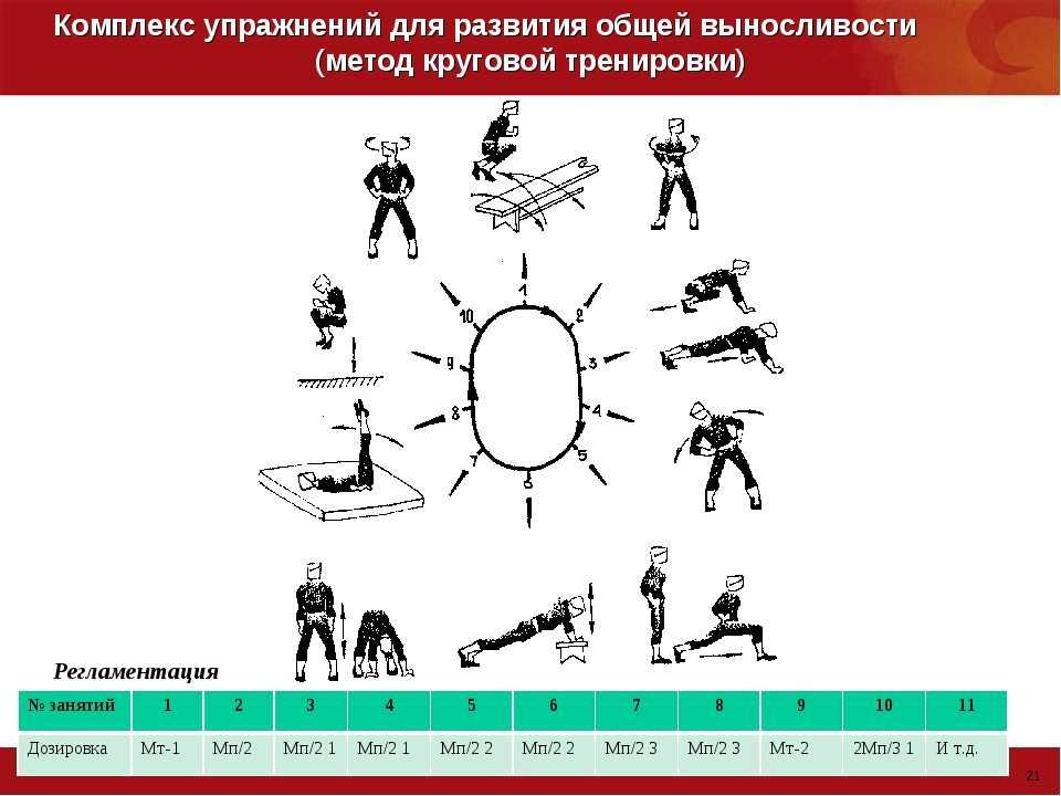 Тренировка силовой выносливости