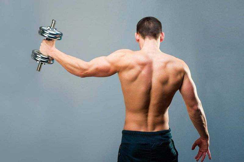 Базовые упражнения для трицепса: техника выполнения упражнений, схемы, практические рекомендации и правила выполнения упражнений на трицепс