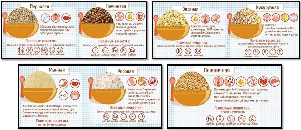 Продукты для набора мышечной массы: список белковой, углеводной и калорийной пищи для роста мышц | lisa.ru