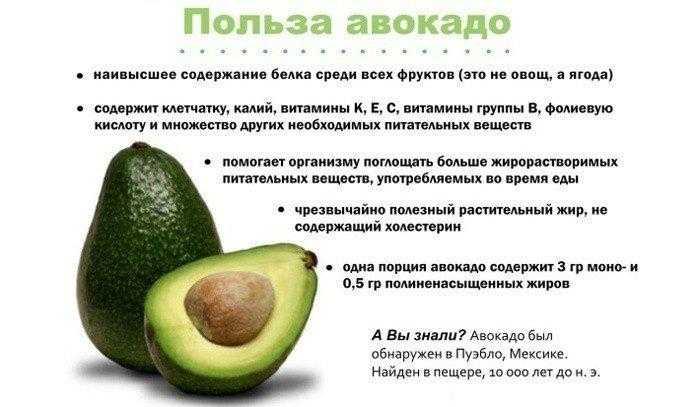 12 полезных свойств авокадо подтвержденных наукой
