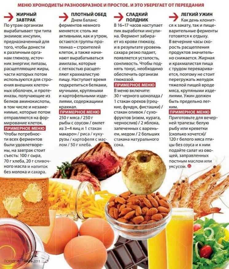 Простая белковая диета: меню недели на каждый день
