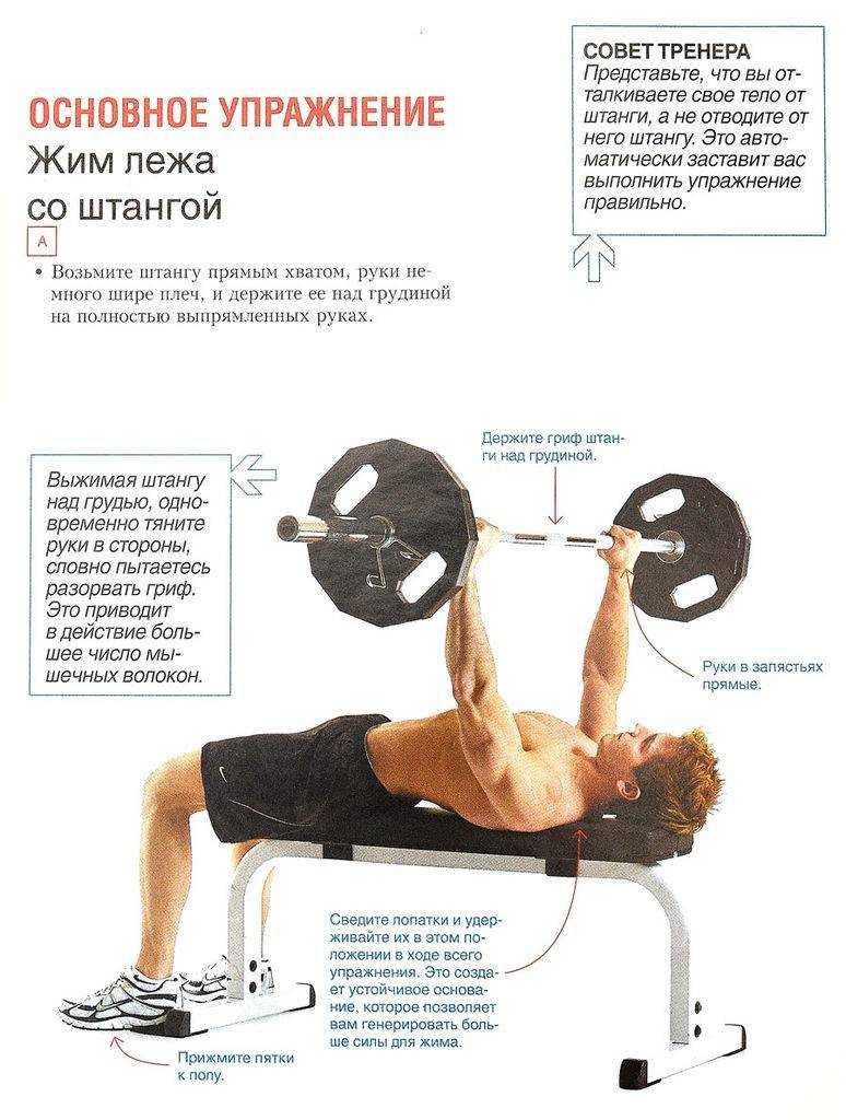 4 отличных упражнения на верх грудных мышц