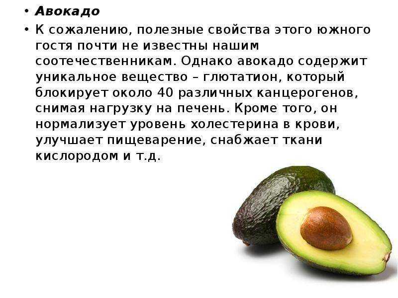 Авокадо: польза и вред, противопоказания, лечебные свойства | здоровье и красота