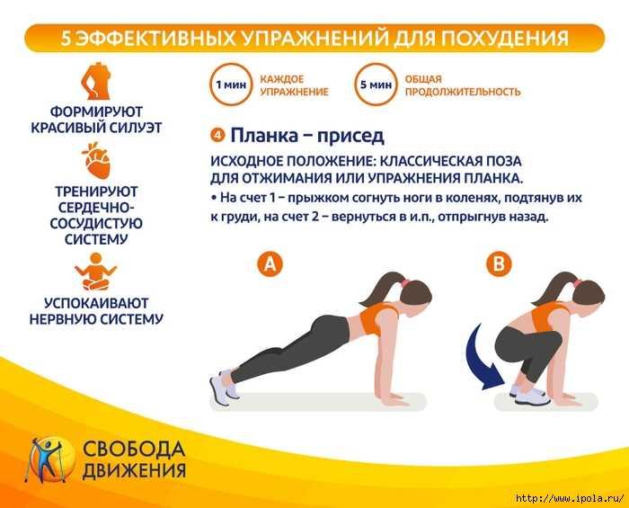 Программа похудения в тренажерном зале для девушек - упражнения для начинающих и план занятий