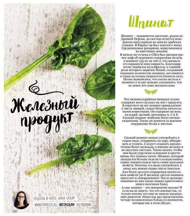 Шпинат – польза и вред, рецепты и калорийность - новости на kp.ua