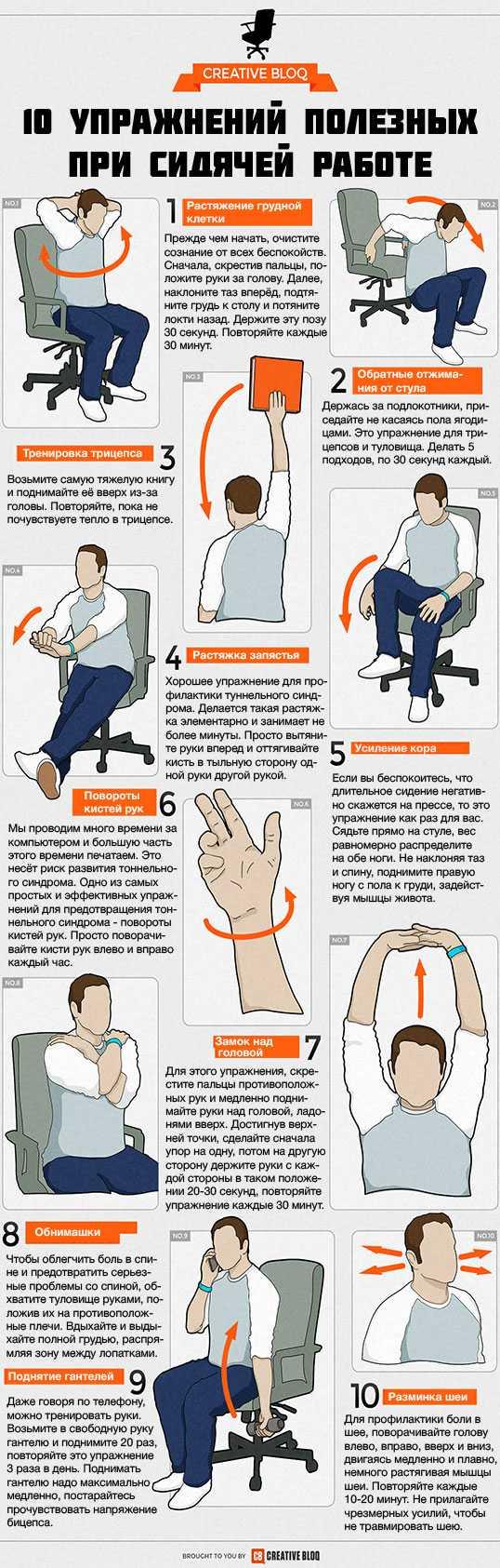 Производственная гимнастика на работе: комплекс простых упражнений для сохранения здоровья