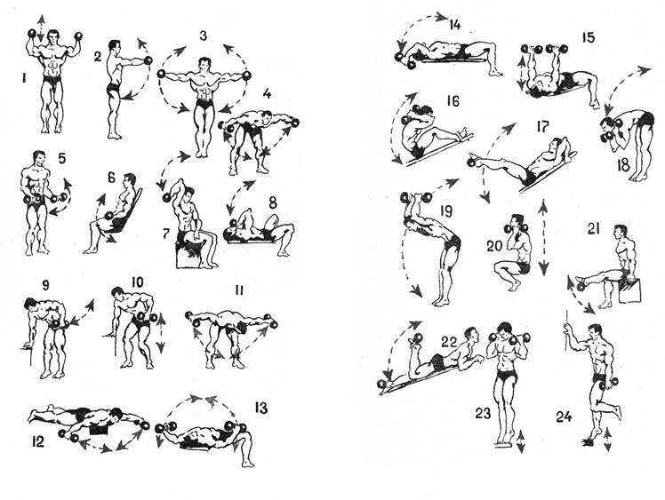 Упражнения на трицепс: советы по подбору эффективных упражнений для нагрузки трицепса (105 фото и видео)
