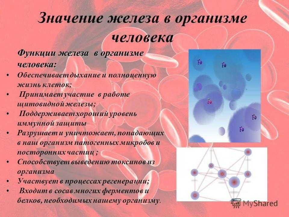 Сывороточное железо. железо в крови, норма, о чем говорит изменение показателей? :: polismed.com