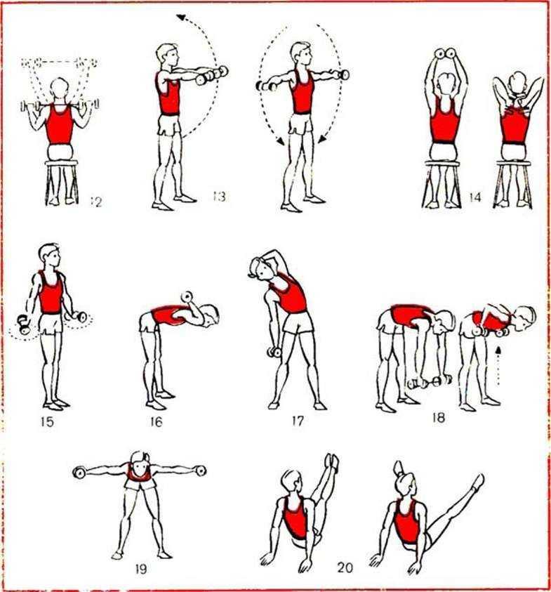 Программа тренировок для девушек в тренажерном зале: лучшие упражнения для похудения