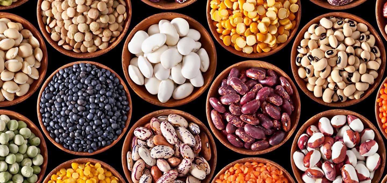 Самые полезные орехи, которые можно есть при похудении: виды и количество