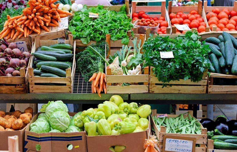 Правила и антиправила для успешного фермера. советы экономистов и агробизнесменов - тасс