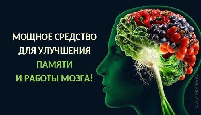 Какие продукты улучшают концентрацию внимания и работу мозга — топ 5 самых полезных