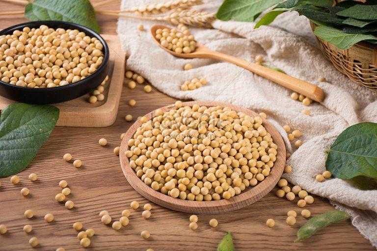 Протеин для похудения: какой лучше и как принимать - соевый, сывороточный или казеиновый? отзывы