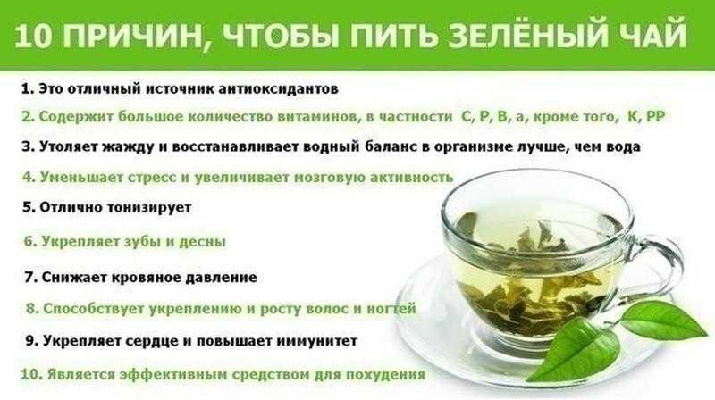 Маска для лица из авокадо: польза, рецепты, результат
