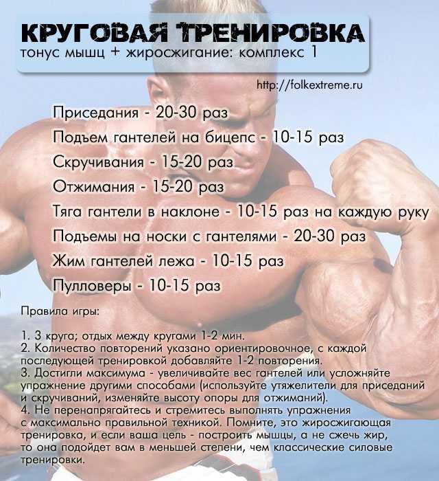 Красивое тело без лишних отложений: особенности выполнения силовых тренировок для сжигания жира
