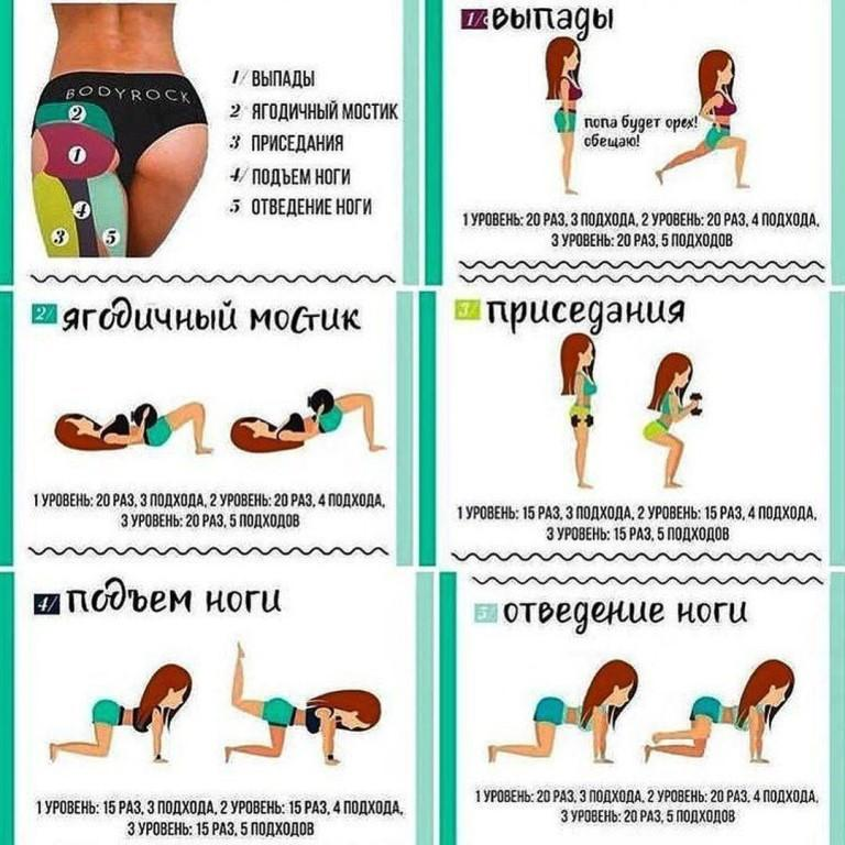 Это эффективная программа тренировок с гантелями на 3 дня (18 упражнений с гифками), которая поможет вам накачать ягодицы в домашних условиях или в зале