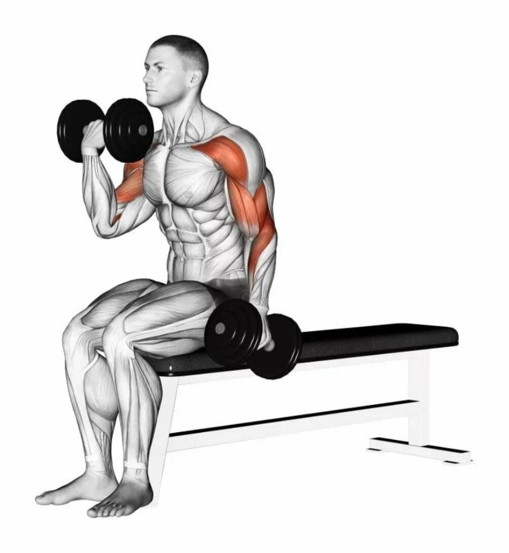 Тело станет здоровым и подкаченным! cиловая программа тренировок для мужчин