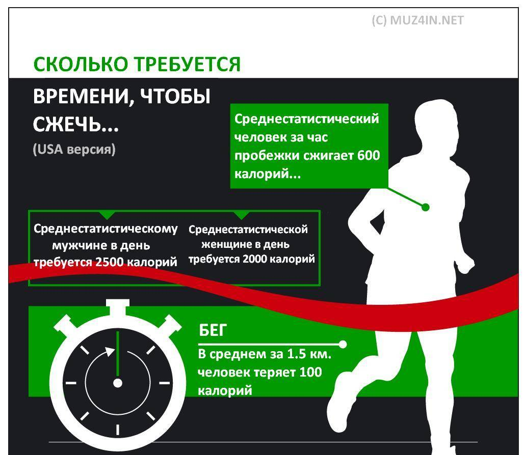 Питание до и после тренировки: советы для похудения