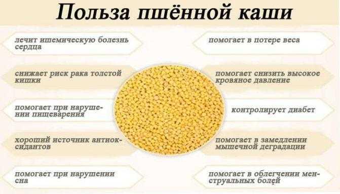Простые рецепты пшенной каши — как правильно варить, польза и вред для организма