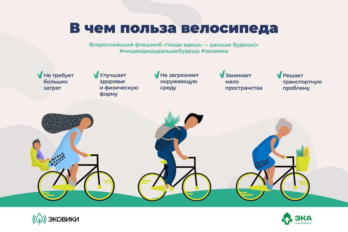 Можно ли похудеть, катаясь на велосипеде каждый день?