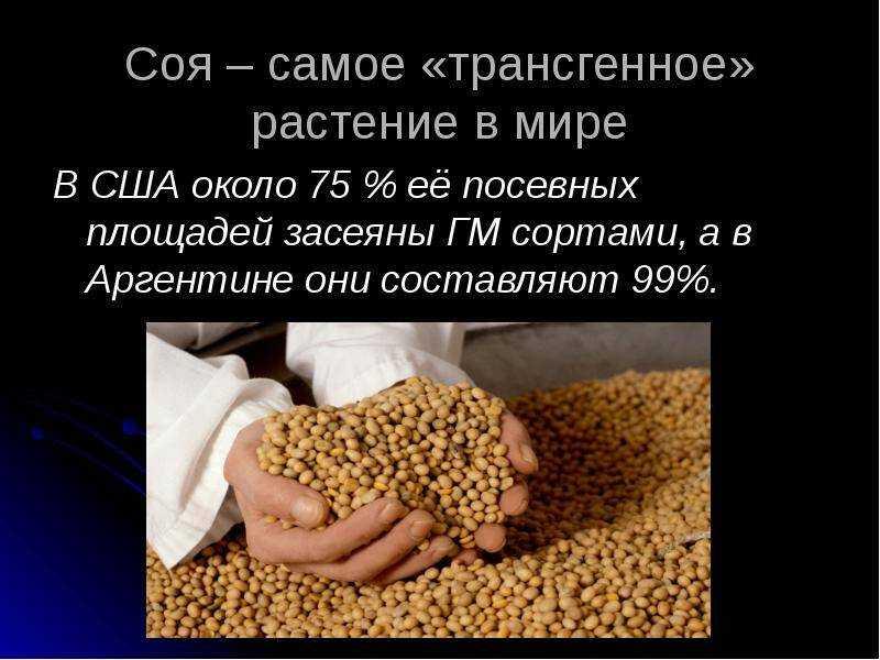 Соя: вред и польза (часть 1). научные исследования   promusculus.ru