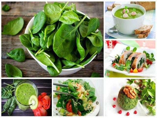 Шпинат - польза и вред для взрослых и детей, состав и калорийность, рецепты приготовления