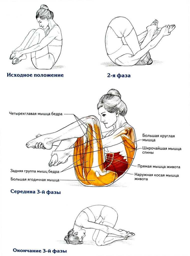 Все об упражнении  разгибание ног сидя  – все боевые искусства и единоборства