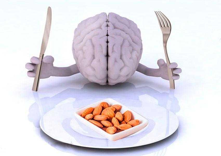 Продукты и диета, улучшающие память и функции мозга