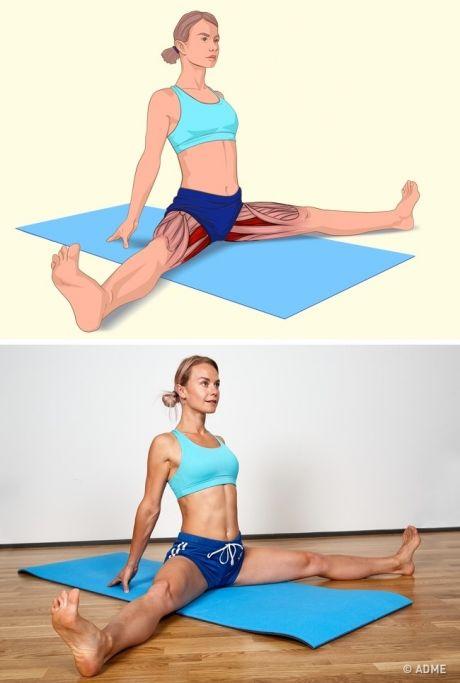 Как грамотно провести растяжку мышц после тренировки?