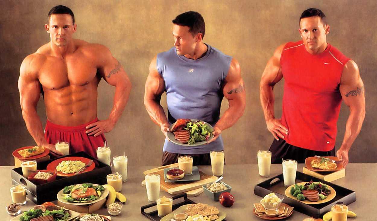 Как правильно сушиться? тренировки и питание для сжигания подкожного жира