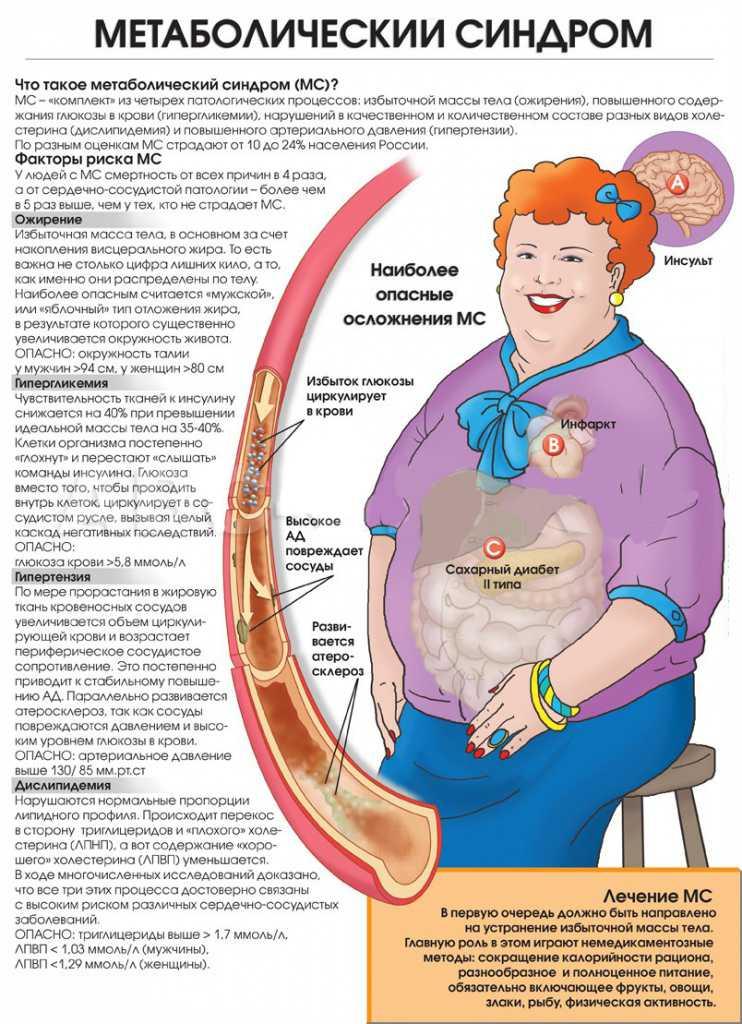 Что происходит с организмом во время похудения: этапы изменений при потере веса