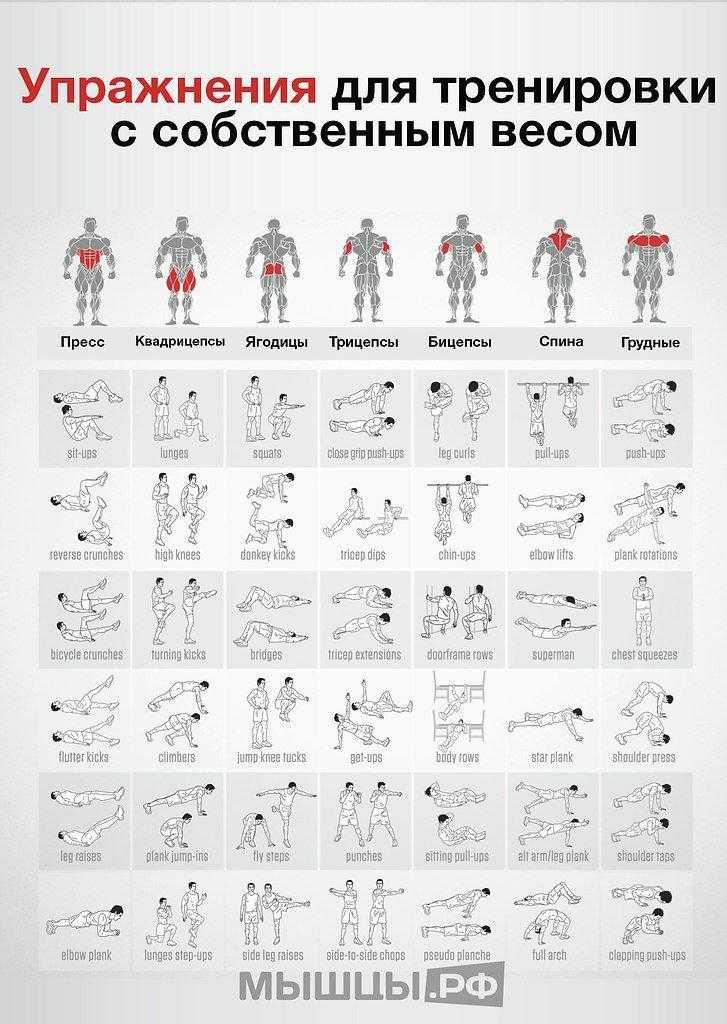 Упражнения с одной гантелей – экономичный и эффективный способ тренировок
