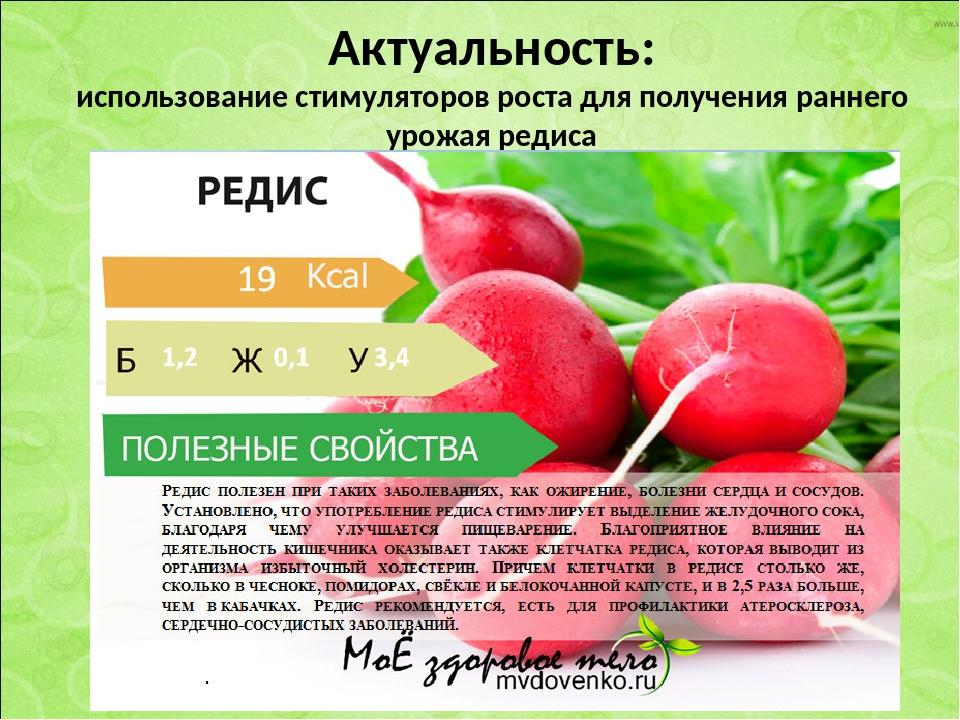 Морковь: польза, её свойства и вред, а также противопоказания для здоровья человека, поможет ли организму от изжоги и при лечении рака, и как применять для лица?