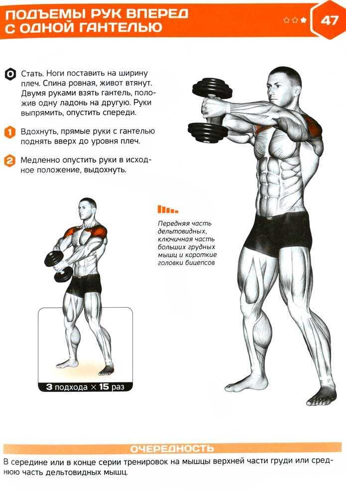 Упражнения на плечи в домашних условиях для мужчин