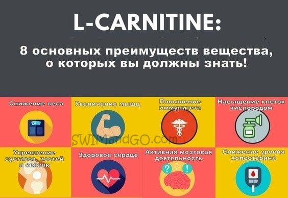 Нужен ли л — карнитин для похудения и как правильно его принимать