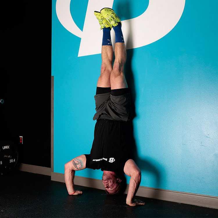 Отжимания в стойке на руках (вниз головой), какие мышцы работают