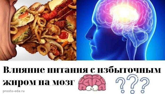 Нашему мозгу нужен животный жир, мнение психиатра