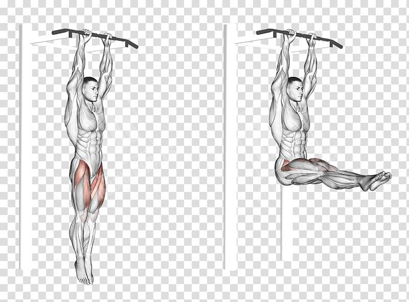 Приседания на одной ноге: как правильно научиться делать?