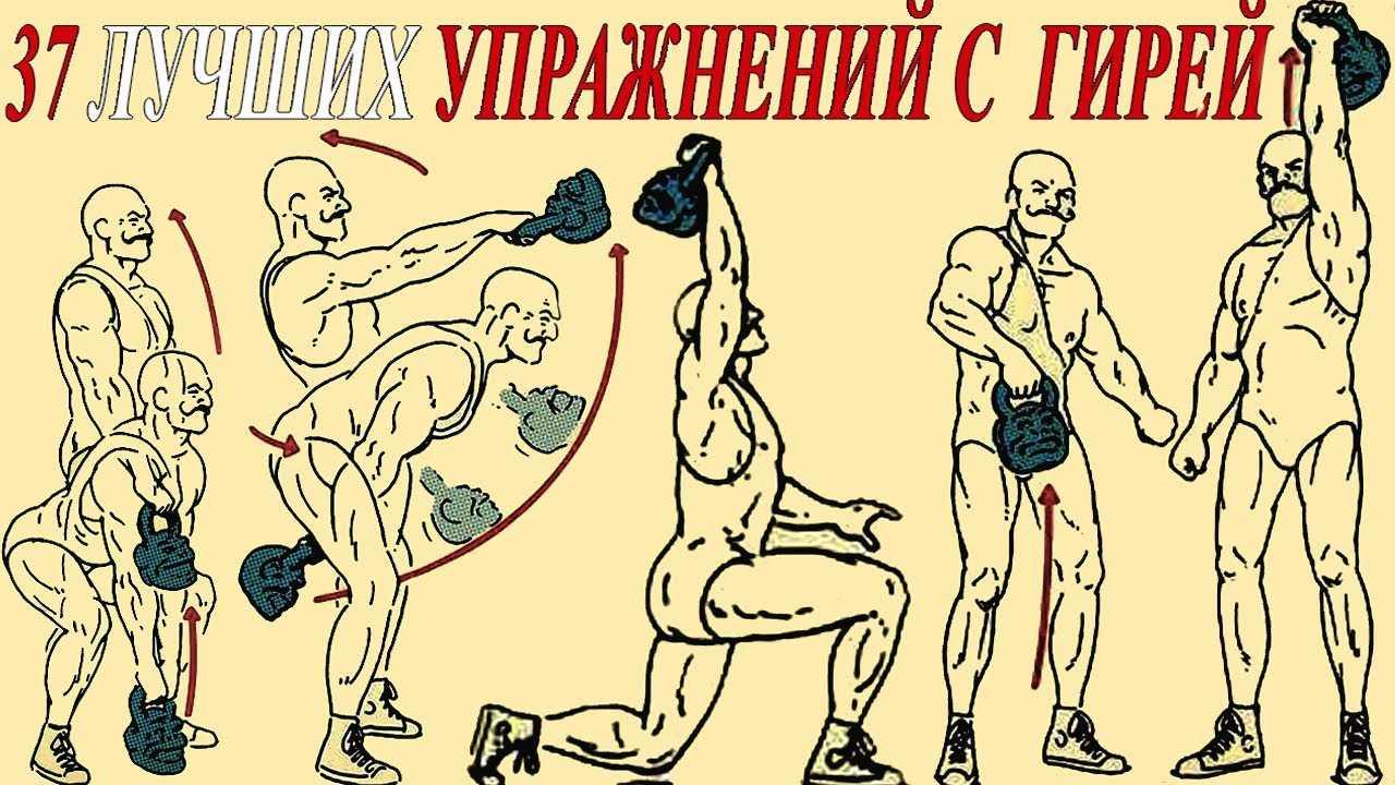 Реферат: план. введение глава. характеристика тренировочного процесса в гиревом спорте задачи занятий гиревым спортом в группе спортивного совершенствования