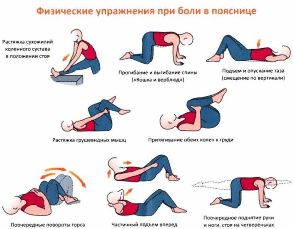 Почему может болеть поясница, когда вы качаете пресс Почему вообще болит спина Когда и как заниматься, какие упражнения можно и нельзя делать, как лечить